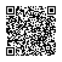 QR link for Advances in Difference Equations : December 2010
